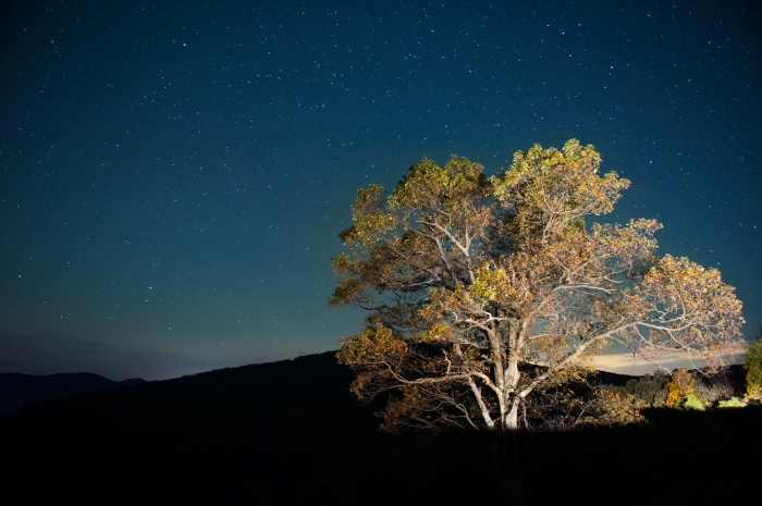 Starry Sky over Shenandoah National Park